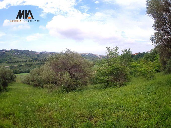 VENDITA: Terreno Edificabile 1245mq immerso nel verde